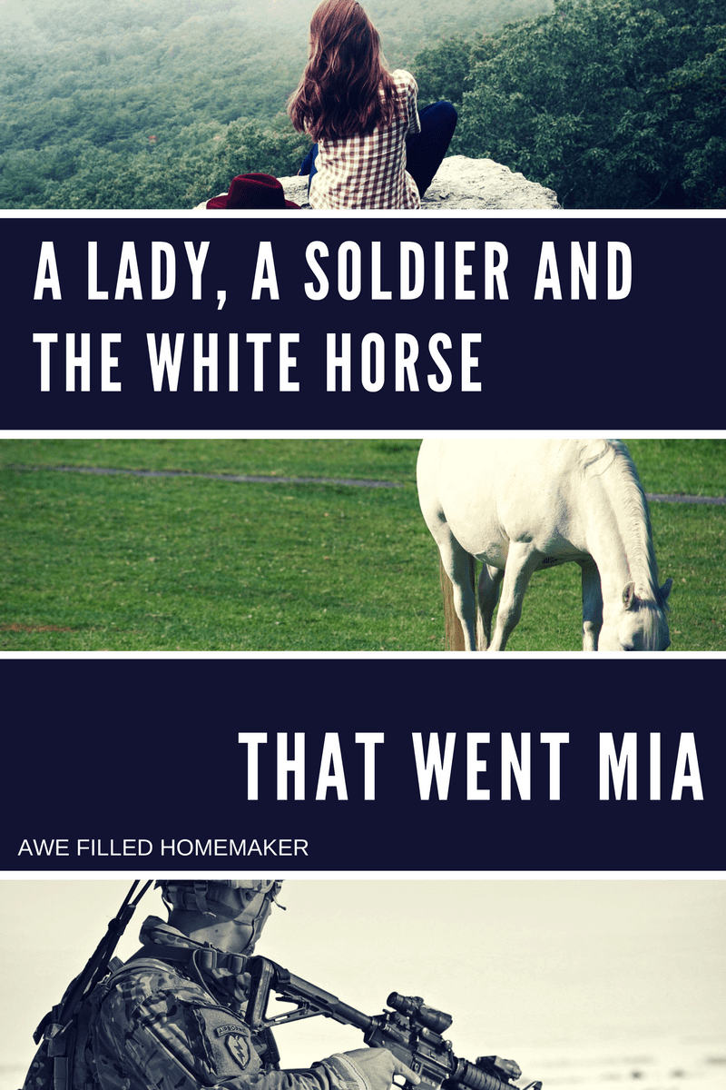 a-lady-a-soldier-and-the-white-horse-that-went-mia-1