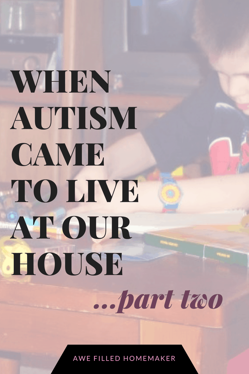 when-autism-came-to-live-at-our-house-part-2-1