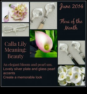 June Flexi of the Month-14