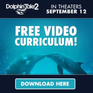Dolphin Tale 2 Homeschool Movie Day