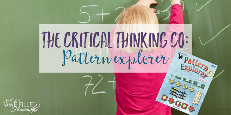 The Critical Thinking Co: Pattern Explorer