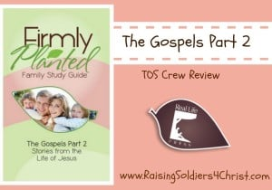 Firmly Planted-Gospels Part 2-Graphic