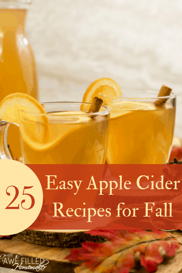 25 Easy Apple Cider Recipes for Fall!
