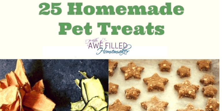 25 Homemade Pet Treats!