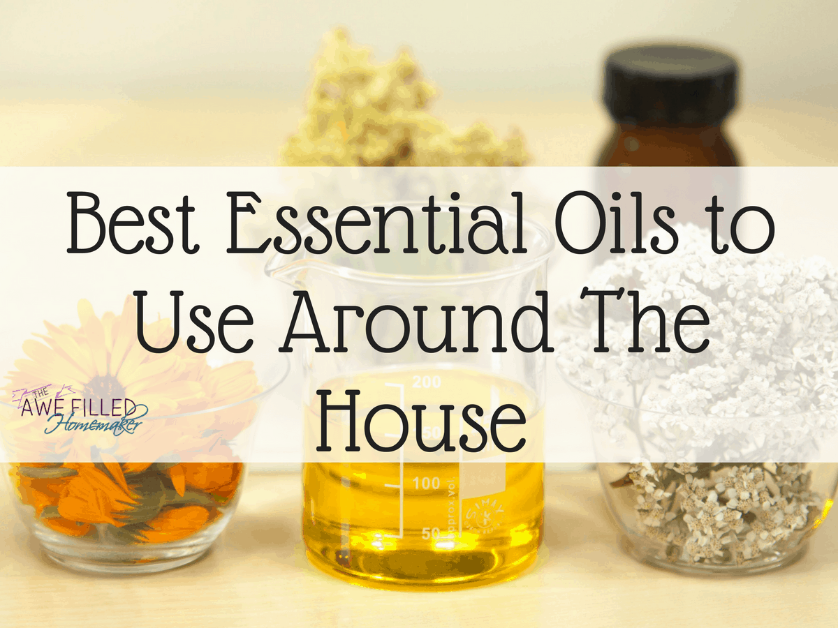 Best Essential Oils to Use Around The House