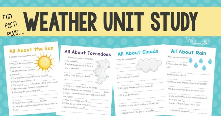 Fun Facts About the Weather Unit Study