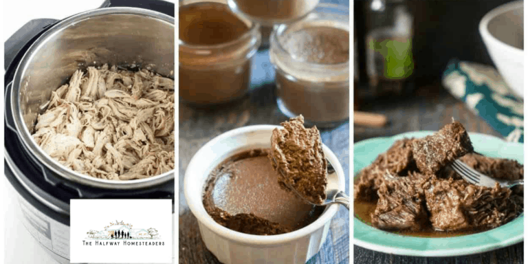 20 Low Carb Instant Pot Dishes!
