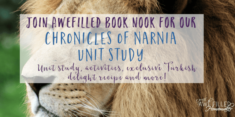 Chronicles of Narnia: Unit Study, Activities & Turkish Delight Recipe!