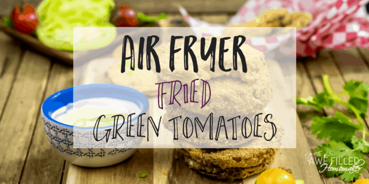 Air Fryer- Fried Green Tomatoes!