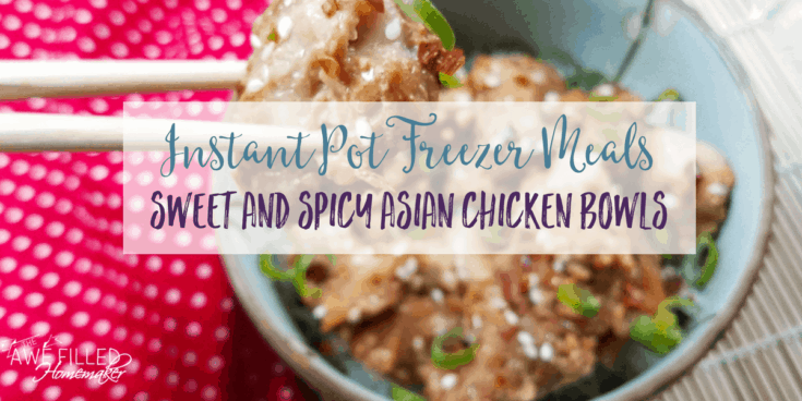 Instant Pot Freezer Meals:Sweet and Spicy Asian Chicken Bowls