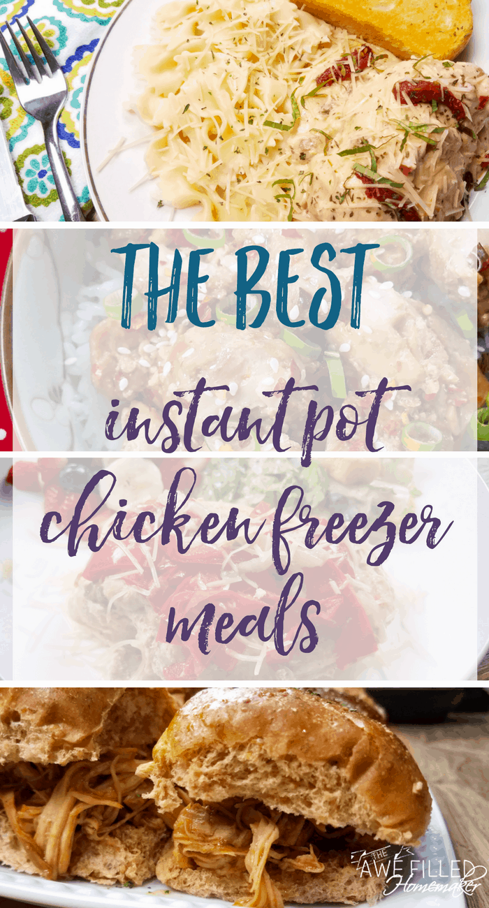 The Best Instant Pot Chicken Freezer Meals