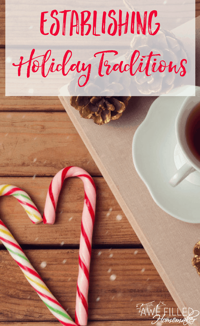 Establishing holiday traditions is a fun way to make memories with your family, incorporate family traditions, and carry on family tradition. Learn some fun new holiday traditions that you can incorporate into the next holiday celebration.