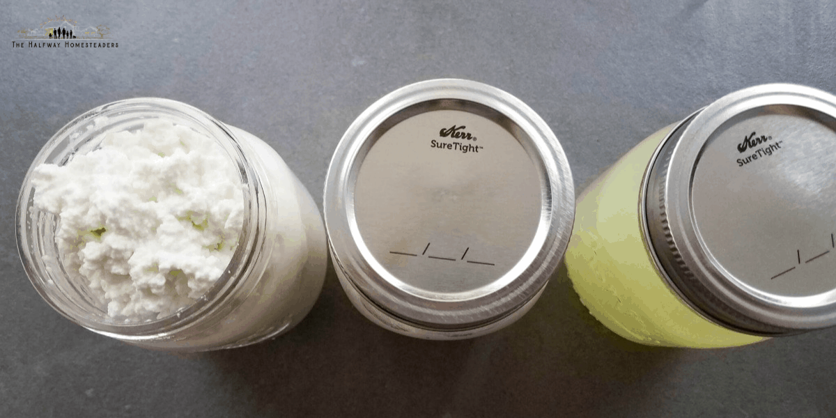 Homemade Cottage Cheese in The Instant Pot