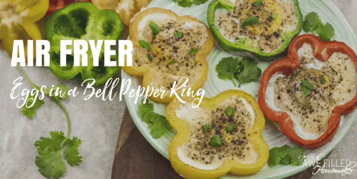 Air Fryer Eggs In A Bell Pepper Ring