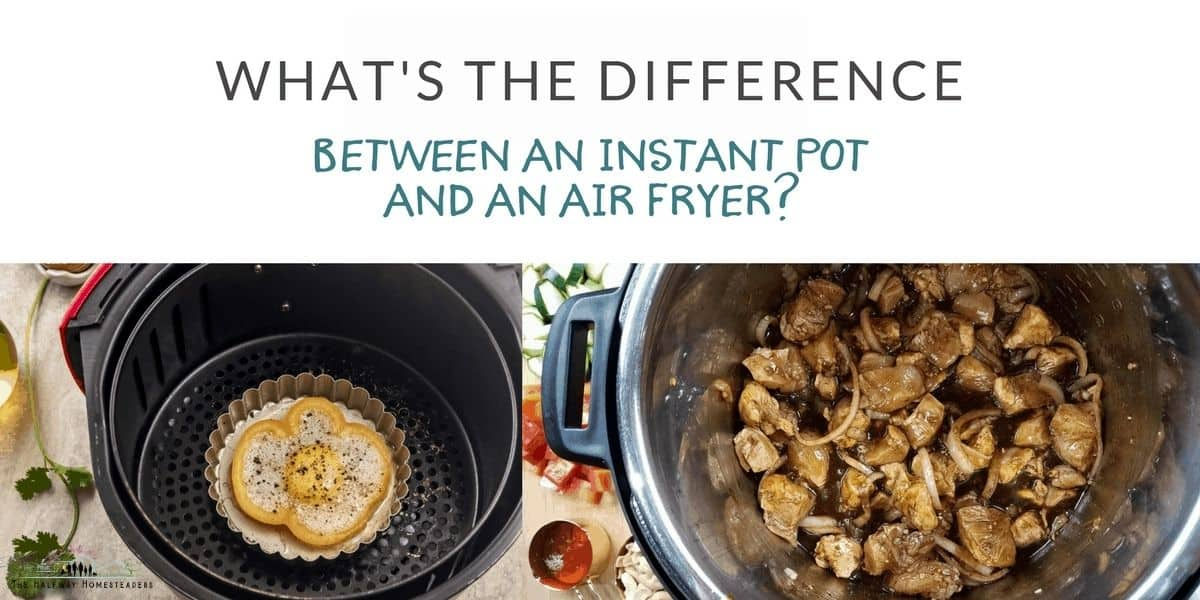 What's the Difference Between an Instant Pot and an Air Fryer