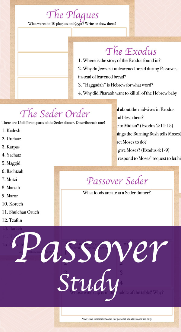 Passover Study that includes the exodus, plagues, seder order, and passover seder.
