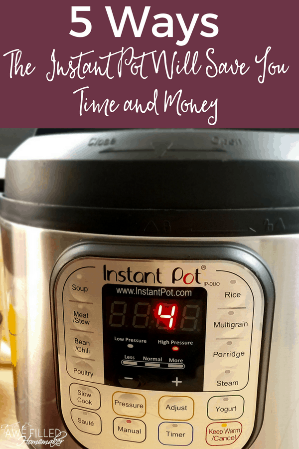 Ways the instant pot will save you time and money
