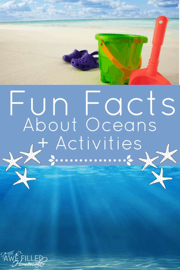 Fun Facts About Oceans