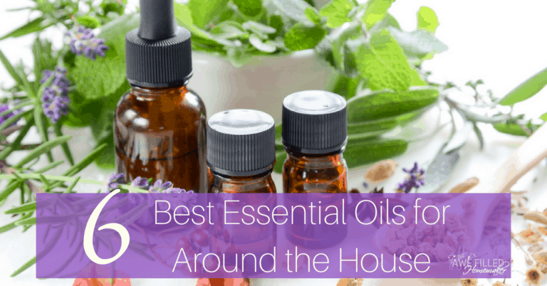 6 Best Essential Oils To Have Around The House