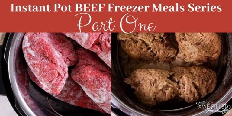 Instant Pot BEEF Freezer Meals Series…Part 1