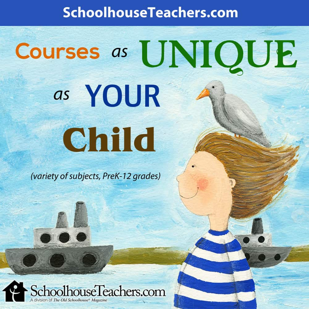 Join Schoolhouse Teachers