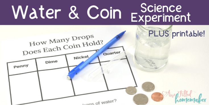 Water & Coin Science Experiment