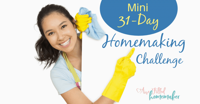 Mini 31 Day Homemaking Challenge