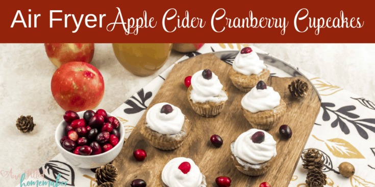 Air Fryer Apple Cider Cranberry Cupcakes