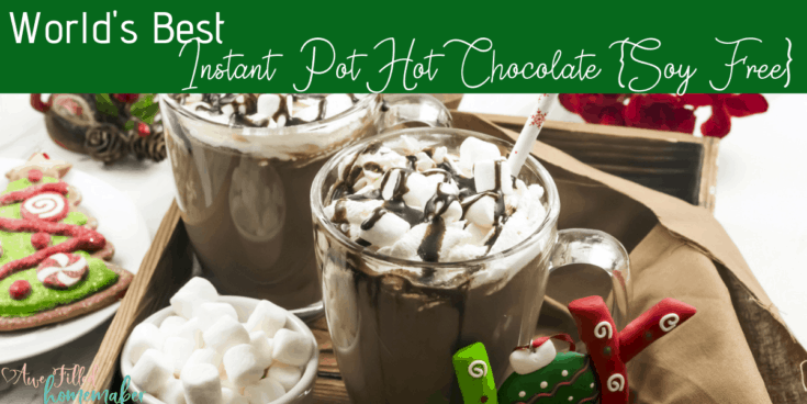 Worlds Best Instant Pot Hot Chocolate