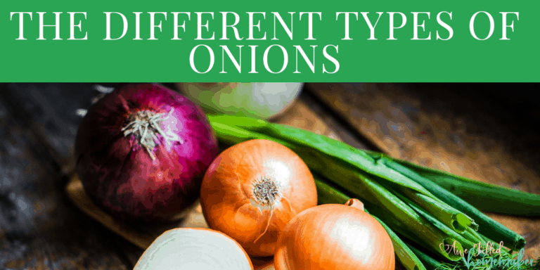 The Different Types of Onions