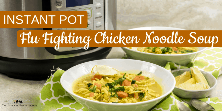 Instant Pot Flu Fighting Chicken Noodle Soup