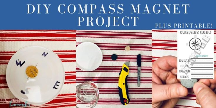 DIY Magnetic Compass Project