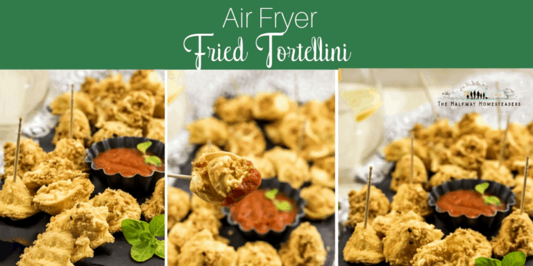 Air Fryer Fried Tortellini