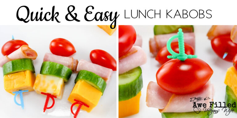 Quick and Easy Lunch Kabobs