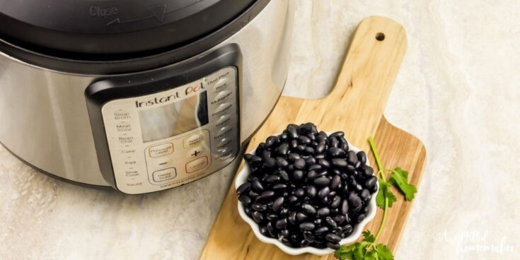 How To Fix Black Beans In The Instant Pot