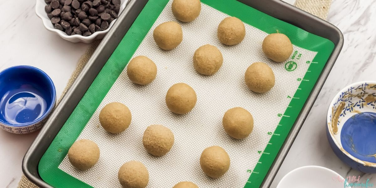 Keto Protein Buckeyes {With Soy Free Directions}