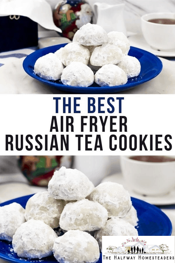 The Best Air Fryer Russian Tea Cookies