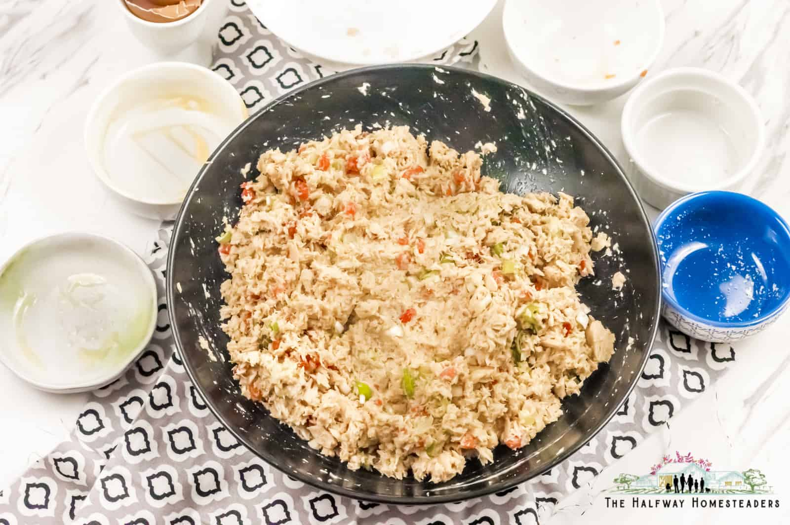 Ingredients for keto salmon patties recipe. Using canned salmon and fresh salmon recipe.