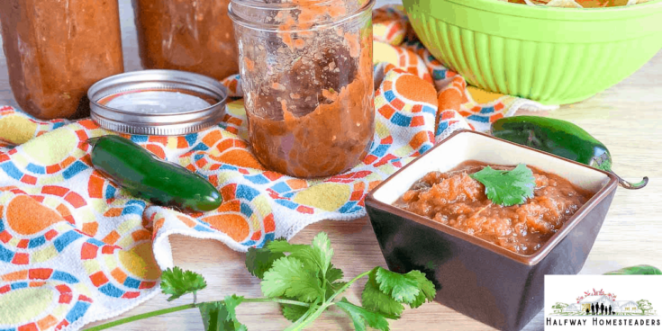 The Best Salsa Recipe For Canning