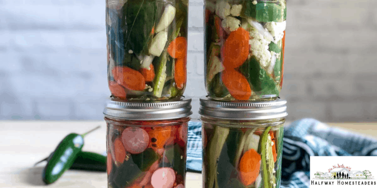 Canned Pickled Jalapenos